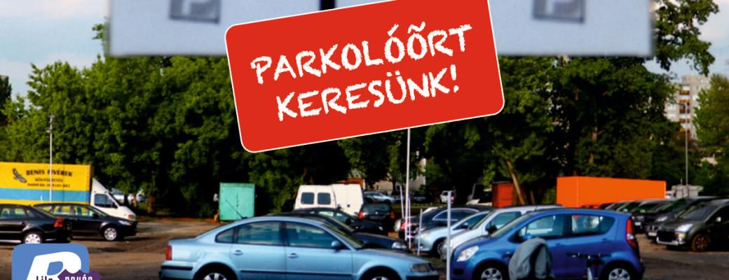 Parkolóőrt keresünk