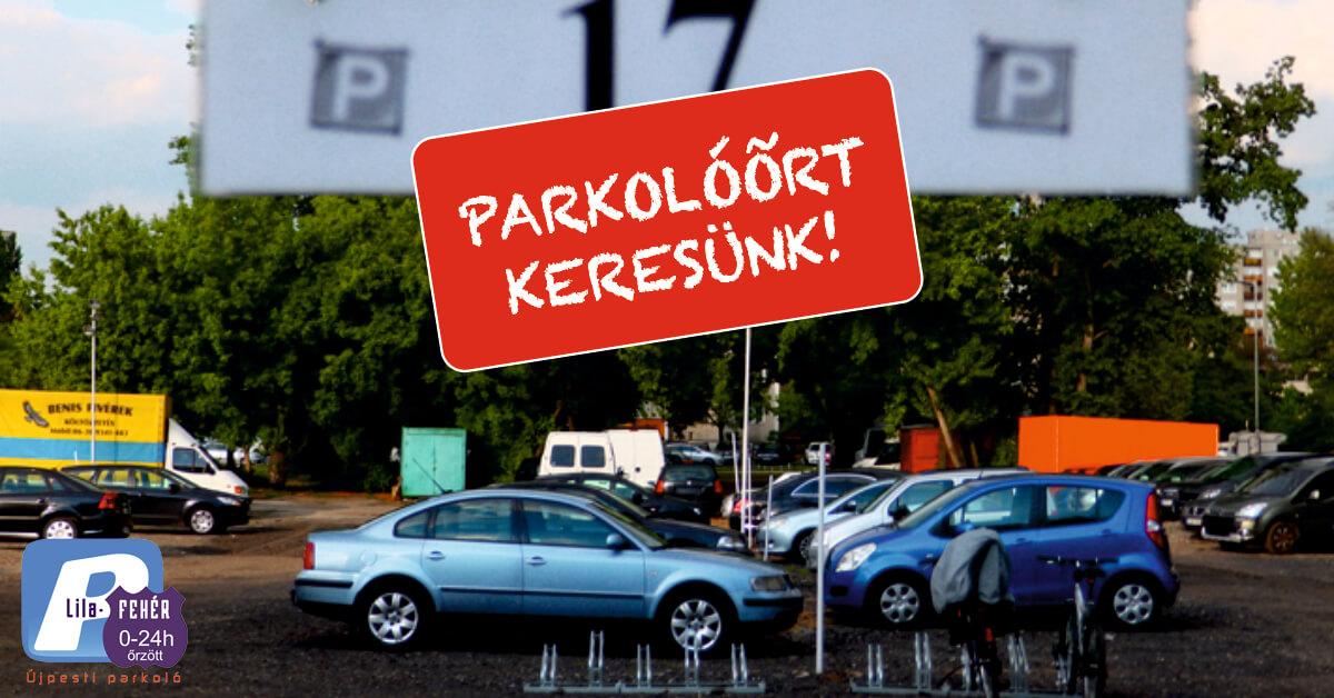 parkolóőrt-keresünk-22
